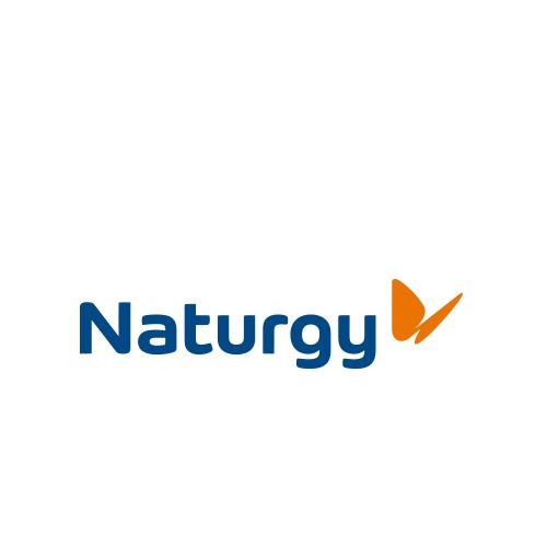 naturgy low